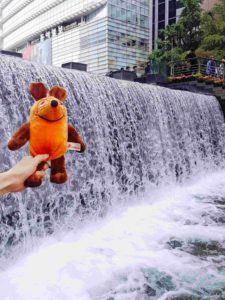 maus-am-wasserfall-cheongyecheon