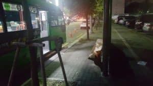 maus-auf-der-bushaltestelle