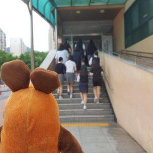 Die Maus geht in das Schulgebäude.