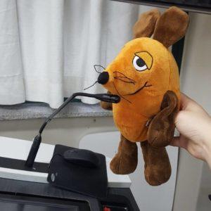Die Maus steht am Mikrofon.