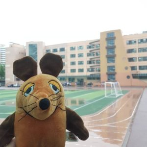 Die Maus steht vor dem Sportplatz.