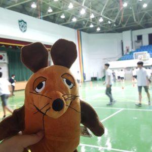 Die Maus steht in der Sporthalle.
