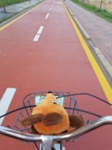 Die Maus fährt auf dem Fahrradweg.