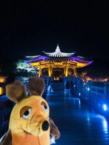 Die Maus bewundert die Brücke Woryeongyo bei Nacht.