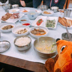 Die Maus isst Hanjeongsik.