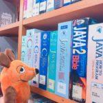 Die Maus sucht ein Buch.